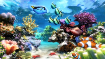 Aquarium Live Wallpaper for PC (55+ images)