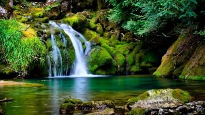 Nature Backgrounds for Desktop (65+ images)