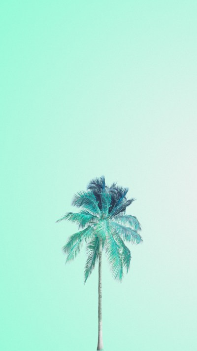 Mint Green iPhone Wallpaper (60+ images)