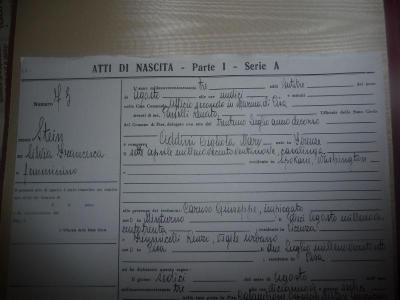 Giant Image Management - Diary of Silviamatrilineally Addini based on birth in Pisa, Italy Jus ...