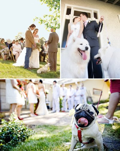 How to Throw a Backyard Wedding: The Extras | Green ...