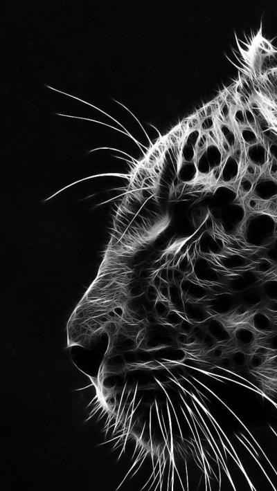 IPhone-HD-Black_White | HD WALLPAPERS