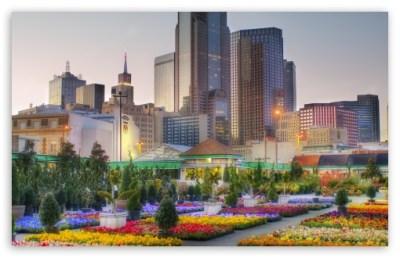Downtown Dallas From The Flower Market 4K HD Desktop Wallpaper for 4K Ultra HD TV • Wide & Ultra ...