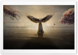 Moonlight Night HD desktop wallpaper : Widescreen : High Definition : Fullscreen : Mobile