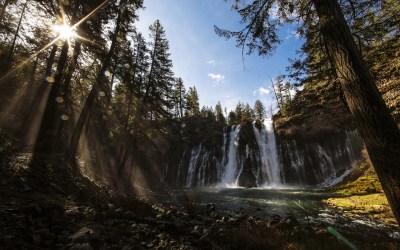 waterfall wallpaper forest - HD Desktop Wallpapers | 4k HD