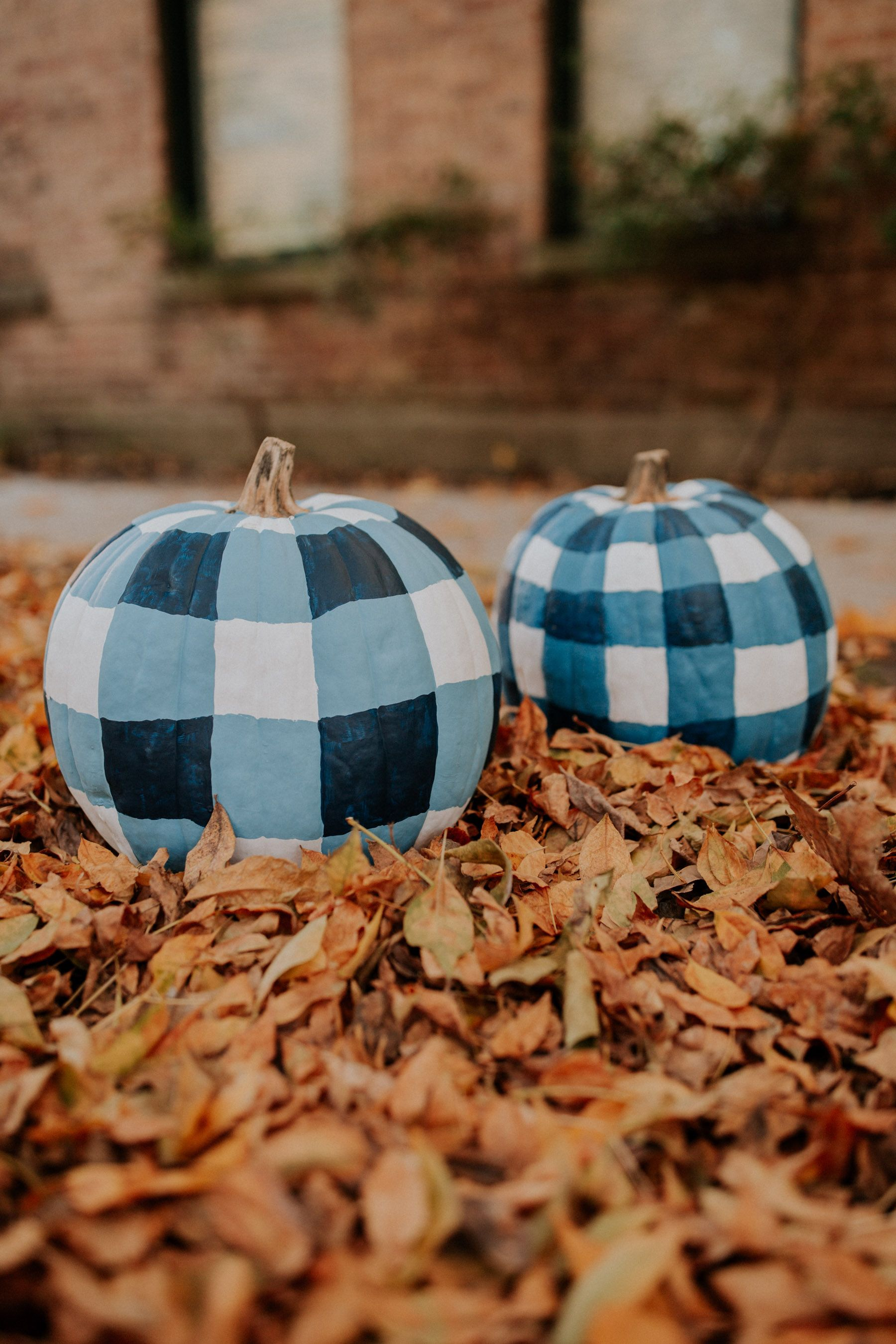 65 Easy Painted Pumpkins Ideas   No Carve Halloween Pumpkin Painting     gingham painted pumpkins