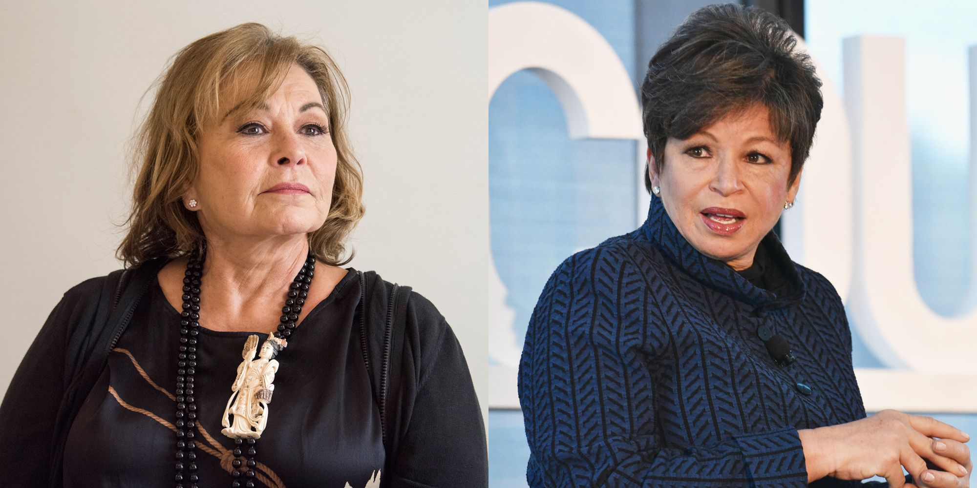 Celebrities Call on ABC to Take Action Against Roseanne Barr After     Roseanne Barr and Valerie Jarrett