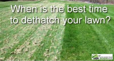 When Is the Best Time to Dethatch Your Lawn - How Does Your Garden Mow