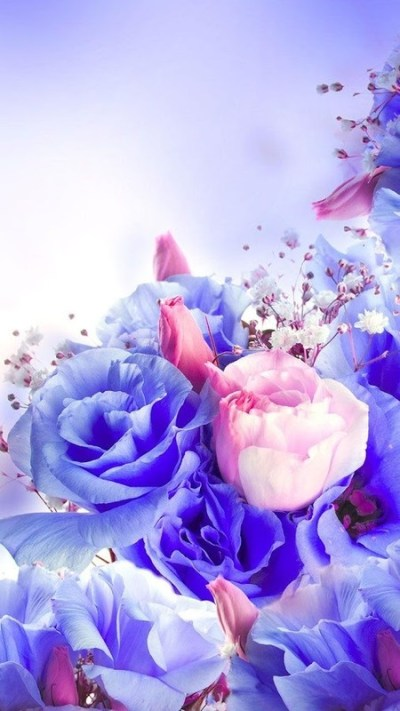 Flowers Live Wallpaper Free Android Live Wallpaper ...