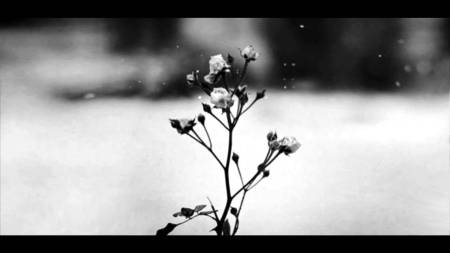 Spring Waltz Chopin