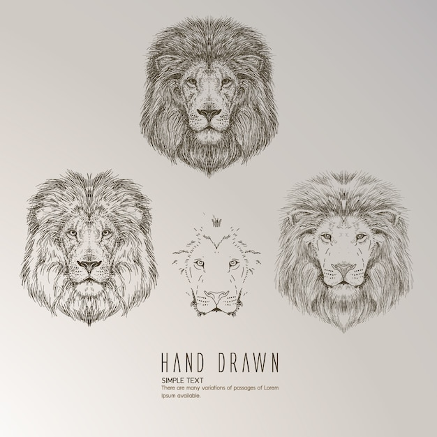 Hand drawn lion s head Vector   Free Download Hand drawn lion s head Free Vector
