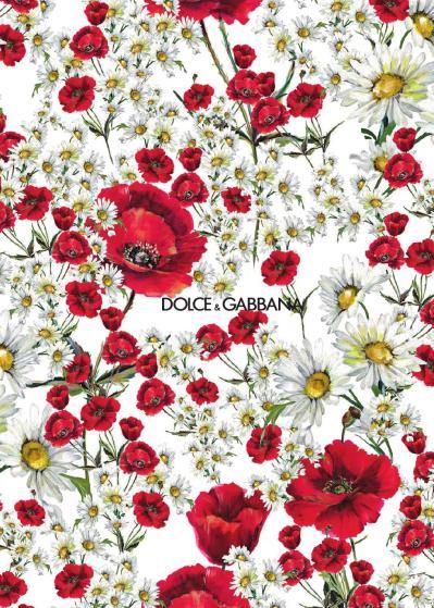 Spring Summer 2016 Women's Catalogue by Dolce&Gabbana - Issuu