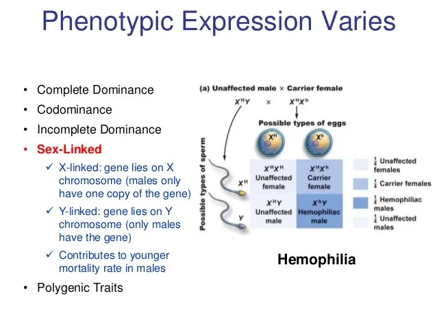 Genetics model 2012 fieldspart 4