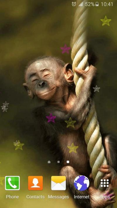 Funny Monkey Live Wallpaper APK Download - Free Personalization APP for Android | APKPure.com