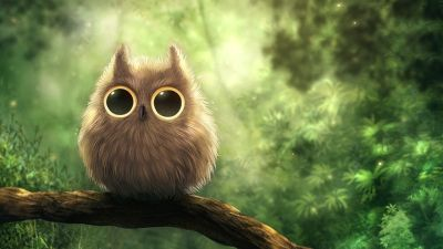 25+ Owl Wallpapers, Backgrounds, Images,Pictures | Design Trends - Premium PSD, Vector Downloads