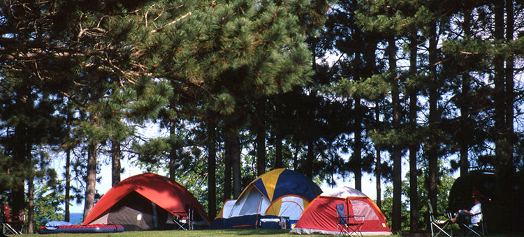 State forest camping   Minnesota DNR   MN Department of Natural     Camping in Minnesota state forests