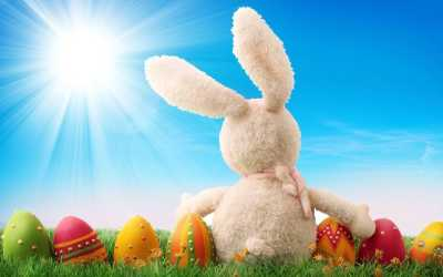 30+ Easter Bunny Wallpapers, Backgrounds, Images | FreeCreatives