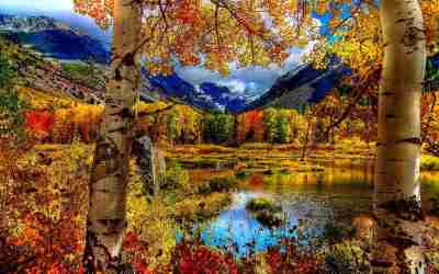 21+ Autumn Backgrounds, Fall Wallpapers, Pictures, Images | FreeCreatives