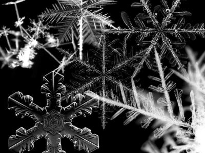 23+ Snowflakes Wallpapers, Snow Backgrounds, Pictures, Images | FreeCreatives