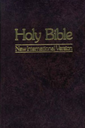 Holy Bible New International Version