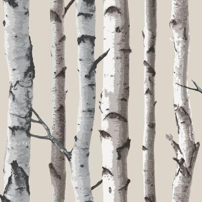 FINE DECOR BIRCH TREES 10m WALLPAPER - WHITE & SILVER | eBay