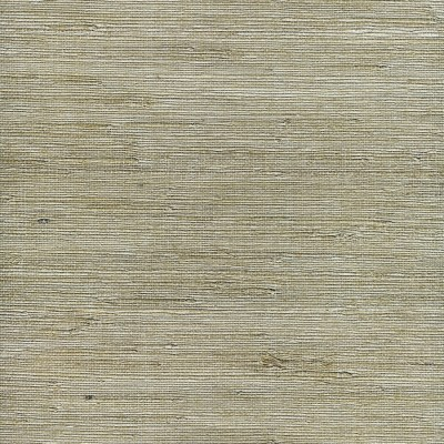 Shop allen + roth White Grasscloth Unpasted Textured Wallpaper at Lowes.com