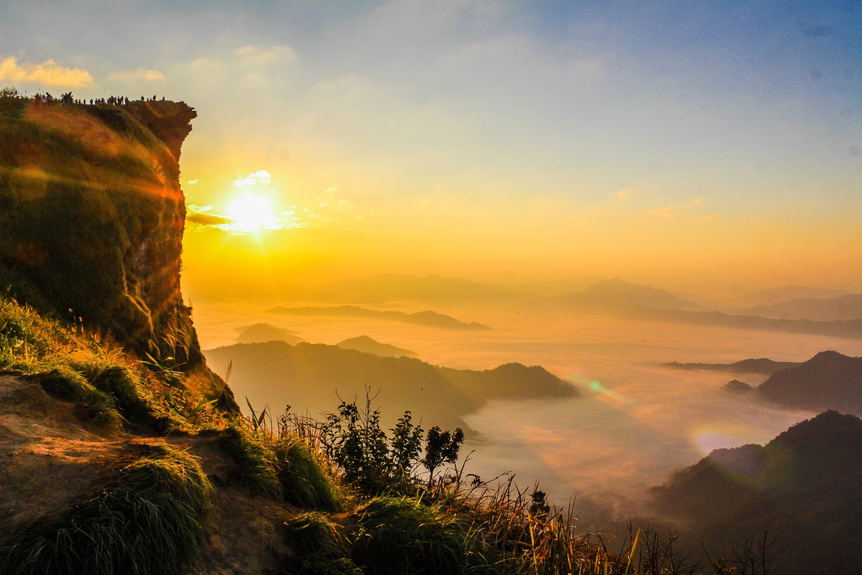 1000+ Great Nature Background Photos · Pexels · Free Stock Photos
