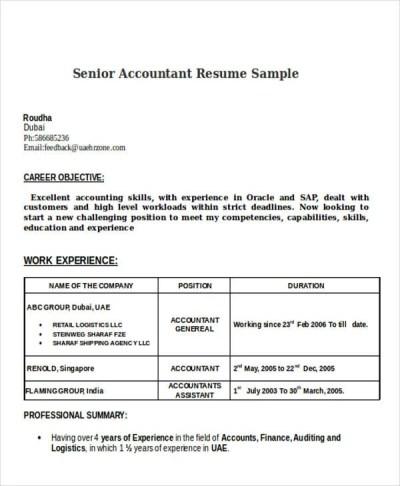 38+ Accountant Resumes in Doc   Free & Premium Templates