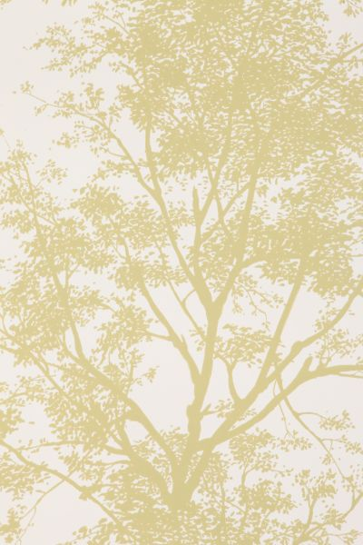 Tree Shadow Wallpaper - Urban Outfitters