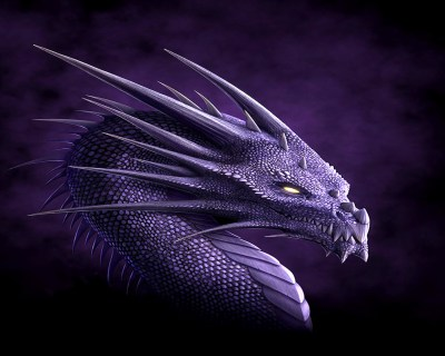 Dragons images Dragon Wallpaper HD wallpaper and background photos (13975574)
