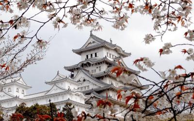 Himeji Castle HD Wallpaper | Background Image | 1920x1200 | ID:17497 - Wallpaper Abyss