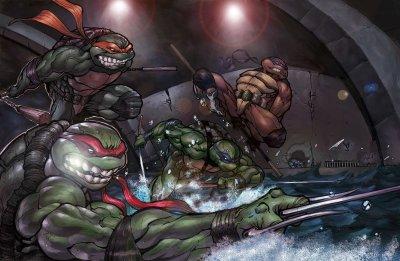 Teenage Mutant Ninja Turtles Wallpaper and Background Image   1800x1176   ID:202035 - Wallpaper ...