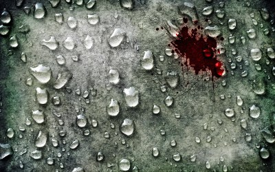 Blood Full HD Wallpaper and Background Image   2560x1600   ID:178786