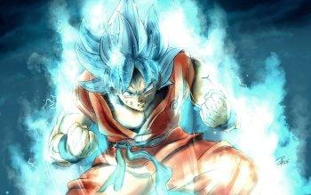 Anime Dragon Ball Super Dragon Ball Goku Super Saiyan Blue HD Wallpaper   Background Image