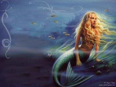 Mermaids images Mermaid Wallpaper HD wallpaper and background photos (15836666)