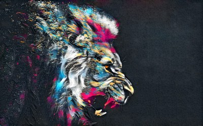 Lion HD Wallpaper | Background Image | 2560x1600 | ID:899282 - Wallpaper Abyss