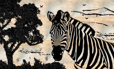 zebra drawing Wallpaper and Background Image | 1790x1100 | ID:326272