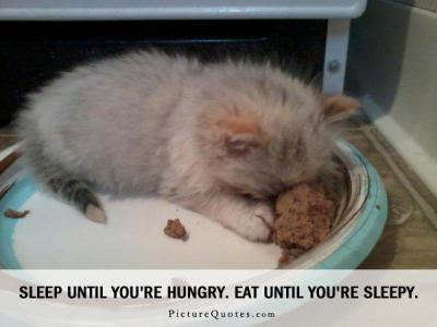 Sleep until you're hungry. Eat until you're sleepy | Picture Quotes