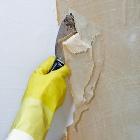 Removing Wallpaper That Has Been Painted | ThriftyFun