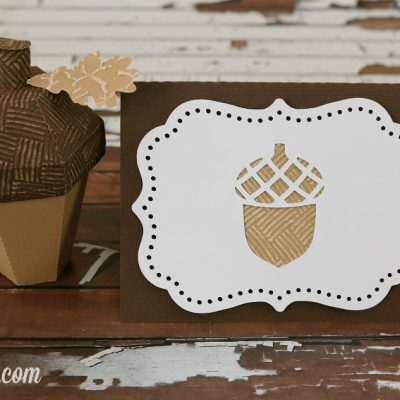 3D Acorn Box and Card
