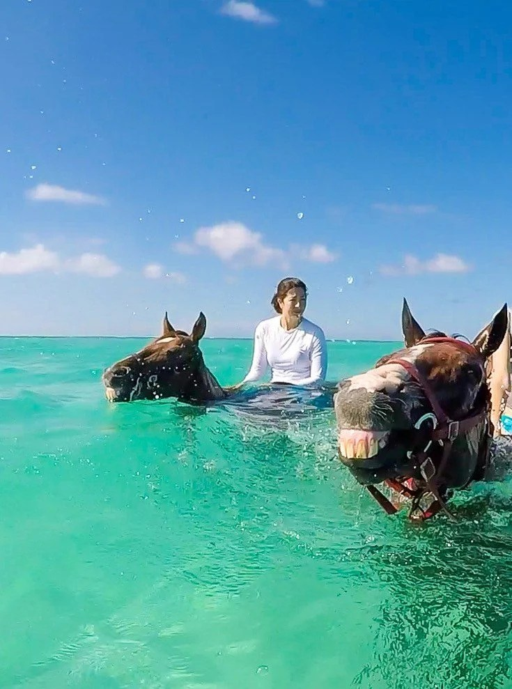 What It s Like to Ride Swimming Horses in Grand Cayman   La Jolla Mom Take a swimming horse tour on your next Cayman Islands vacation