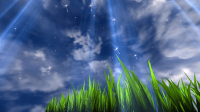 3D GRASS Live Wallpaper - Android Apps on Google Play
