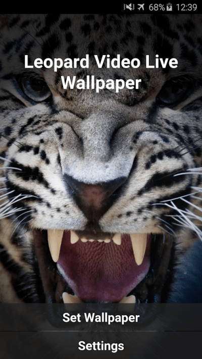 Leopard Video Live Wallpaper - Android Apps on Google Play