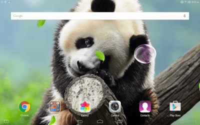 Cute Panda Live Wallpaper - Android Apps on Google Play
