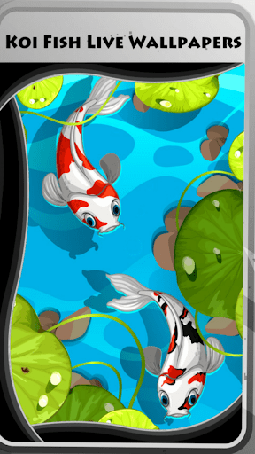 Download Koi Fish Live Wallpapers for PC