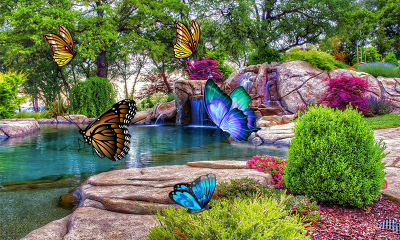 3D Butterfly Live Wallpaper - Android Apps on Google Play