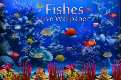 Fishes Live Wallpaper 2017 - Android Apps on Google Play