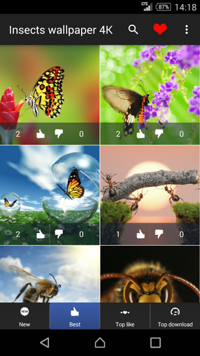 Insects Wallpapers 4K - Android Apps on Google Play