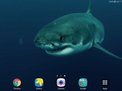 Shark 4K Live Wallpaper - Android Apps on Google Play