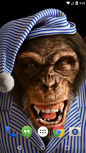Download Angry Monkey 3D Live Wallpaper Google Play softwares - a0hRWi9XsNKZ | mobile9